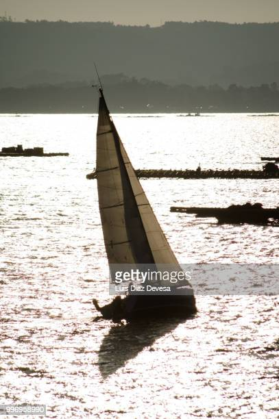 sailboat sailing among mussel beds - cozza zebrata foto e immagini stock