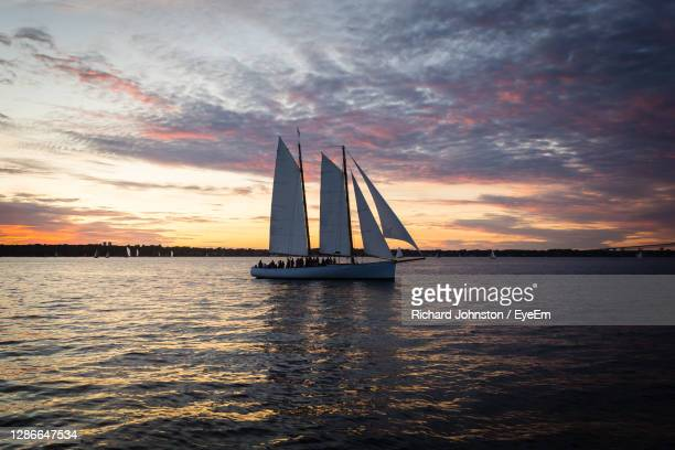 sailboat sailing on sea against sky during sunset - rhode island stock pictures, royalty-free photos & images