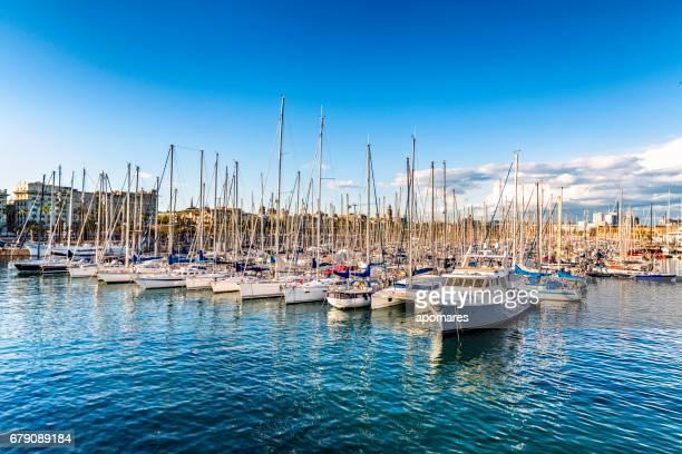 Sailboats at a marina yacht harbor