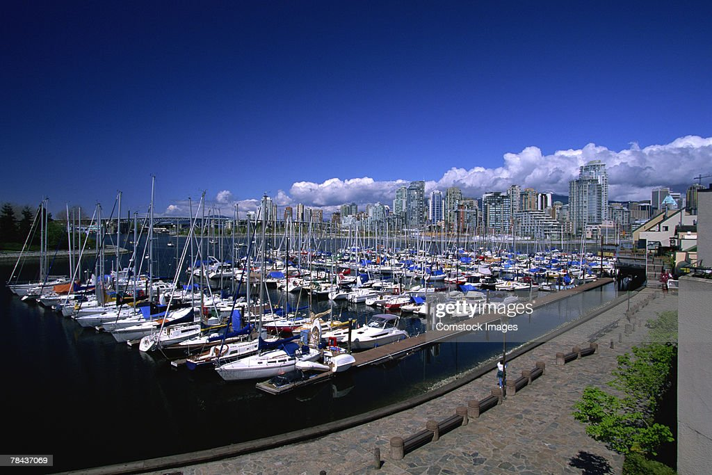 Sailboats docked in marina : Stockfoto