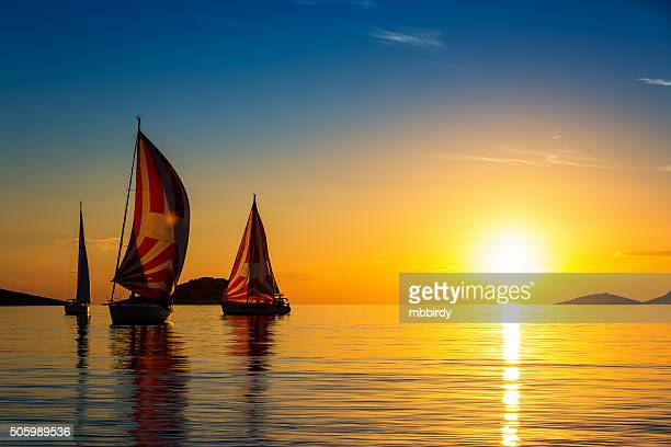 Sailboats formation at sunset