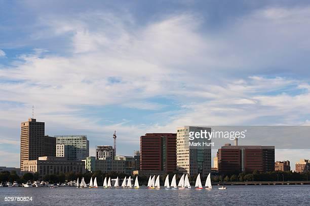 Sailboats in a river, Massachusetts Institute of Technology, Charles River, Boston, Massachusetts, USA