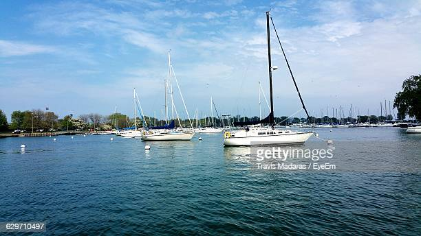 Sailboats In Lake