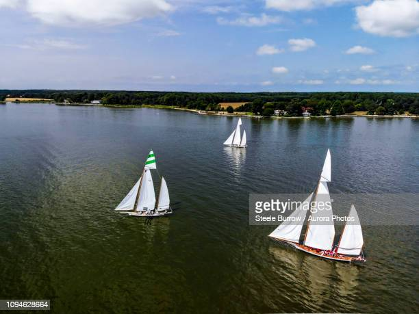 sailboats in regatta along chesapeake bay, maryland, usa - chesapeake bay stock pictures, royalty-free photos & images