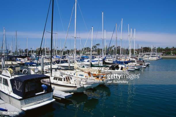 Sailboats Moored in Marina Del Rey