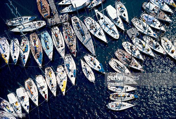 Sailboats rafted up, aerial view