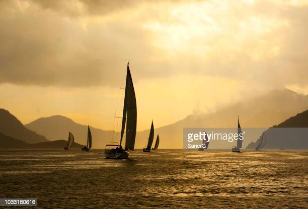sailing at sunset - glider stock photos and pictures