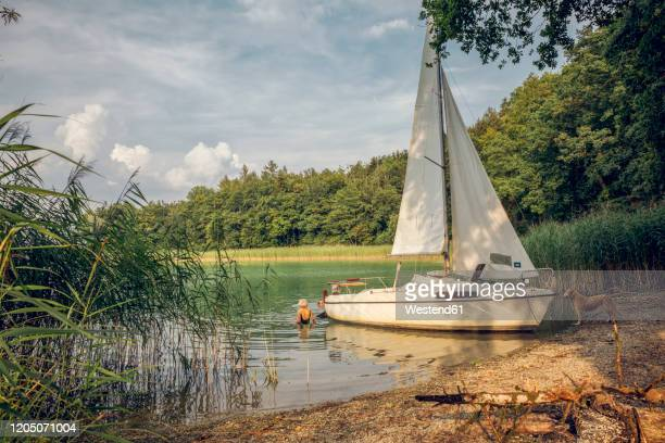 sailing boat at lakeside, dog and two people swimming - sailboat stock-fotos und bilder