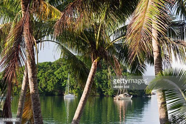 Sailing Boats anchor near Island Suva Harbour Viti Levu Fiji