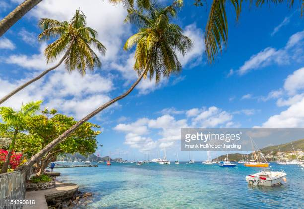 sailing boats anchoring in port elizabeth, admiralty bay, bequia, the grenadines, st. vincent and the grenadines, windward islands, west indies, caribbean, central america - saint vincent and the grenadines stock pictures, royalty-free photos & images
