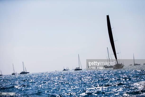 Sailing boats at sea
