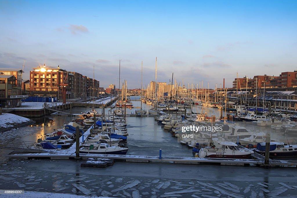 sailing boats in the marina of Scheveningen : Stock Photo
