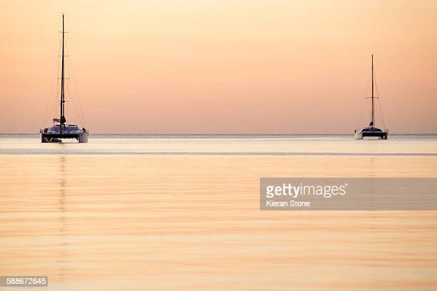 Sailing catamarang at sunset