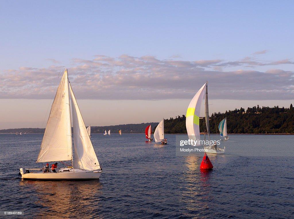 Sailing in Puget Sound : Foto de stock