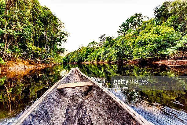 Vela em indígena Canoa de madeira na Amazon de Venezuela