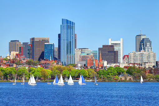 Sailing on the Charles River in Boston 920600038