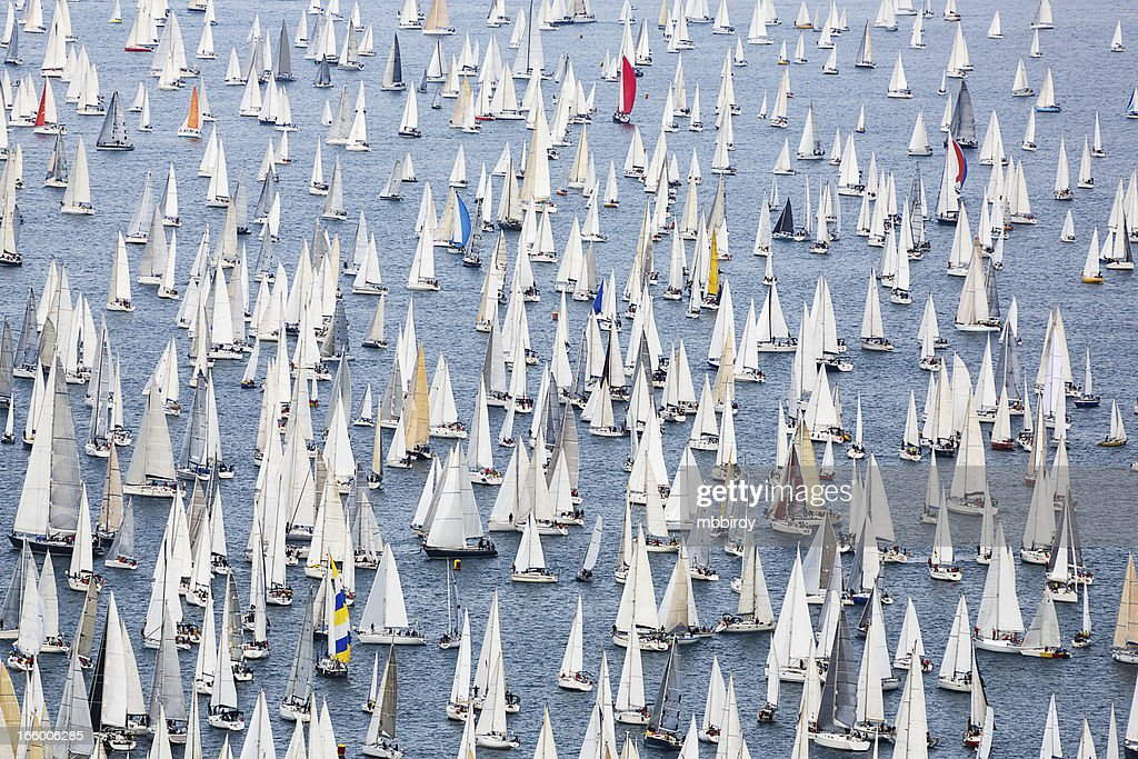 Sailing regatta Barcolana : Stock Photo