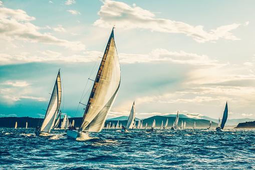Sailing regatta in early morning 623779336