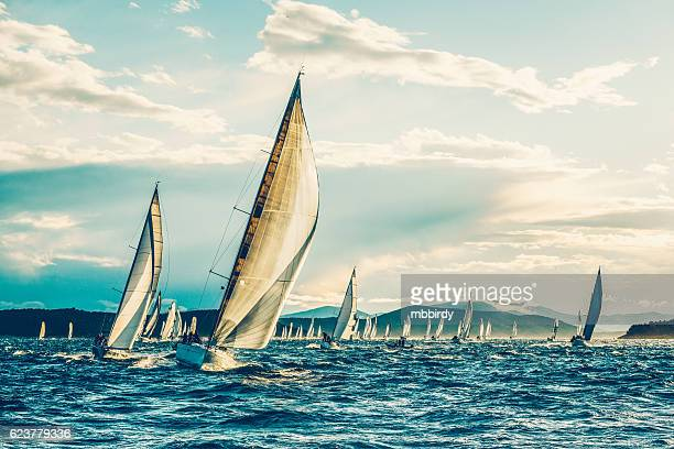 sailing regatta in early morning - sports race stock pictures, royalty-free photos & images