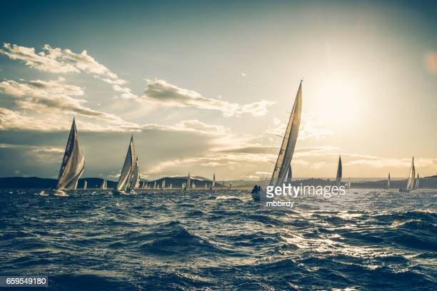 sailing regatta on sunny autumn morning - sailing team stock pictures, royalty-free photos & images
