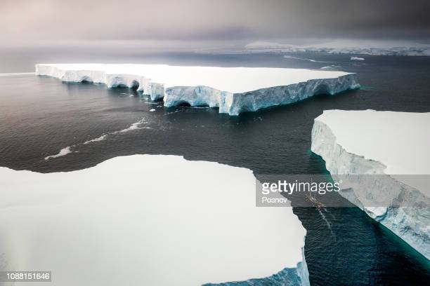 sailing through enormously huge icebergs near melchior islands - antarctique photos et images de collection