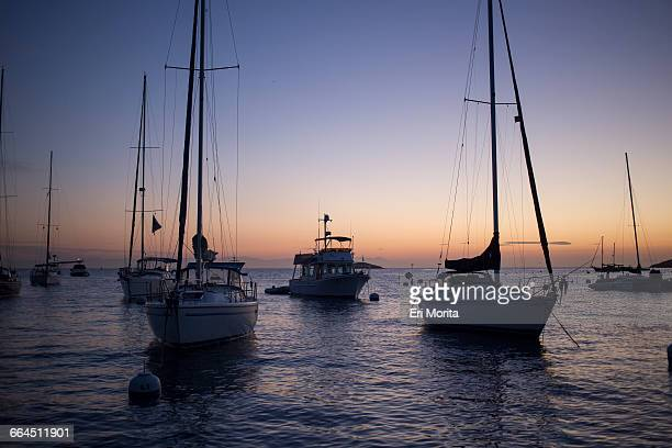Sailing trip to Catalina Island, CA