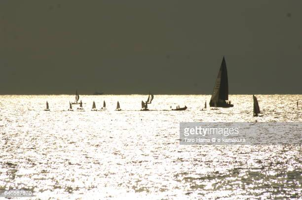 sailing yacht on the sunset beach - image title stock pictures, royalty-free photos & images