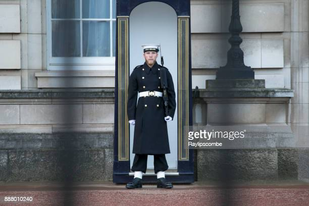 sailor from the royal navy keeping guard at buckingham palace. - royal navy stock pictures, royalty-free photos & images