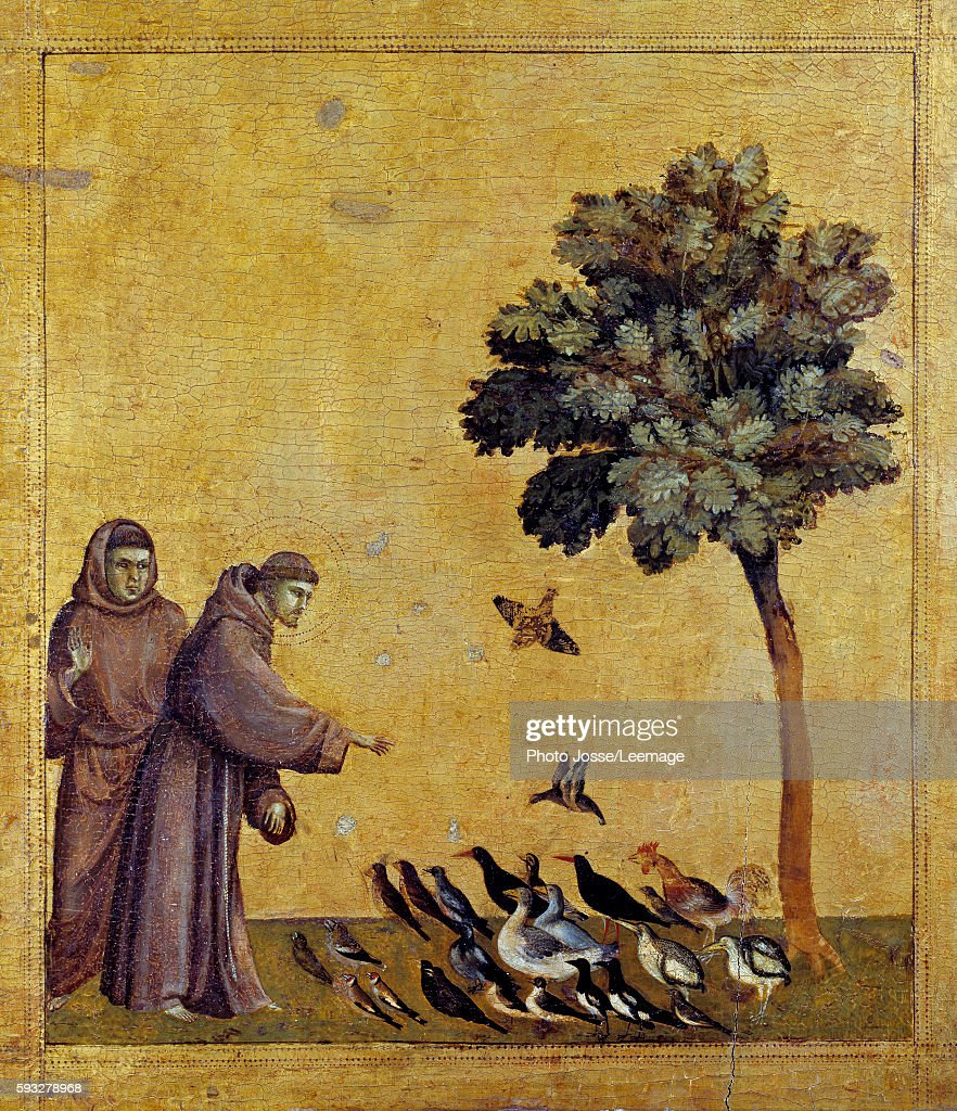 St Francis Of Assisi Stock Photos And Pictures