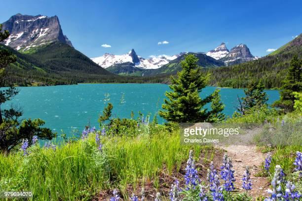saint mary lake, glacier national park, montana, usa - glacier national park stock pictures, royalty-free photos & images
