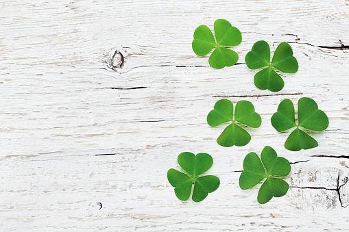 Saint Patricks Day background with green shamrock. Flat lay. 647218752
