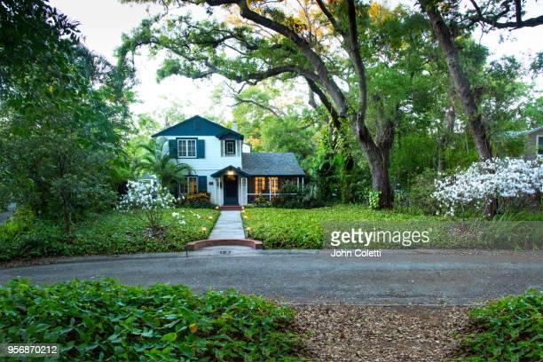 saint petersburg, florida, driftwood neighborhood - florida nature stock pictures, royalty-free photos & images