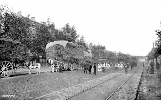 SaintDenis The straw market providing in the past the NorthEast suburbs firms 19051910