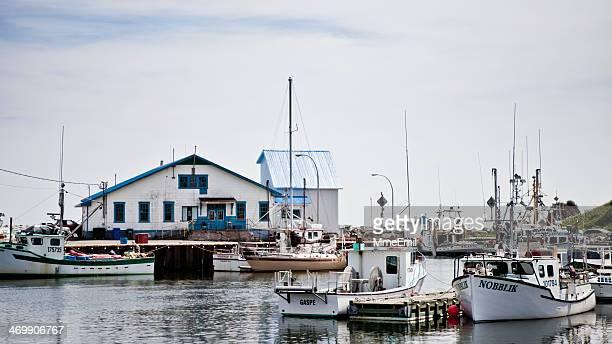 sainte-thérese-de-gaspé harbour - gaspe peninsula stock pictures, royalty-free photos & images