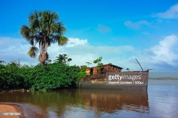 saint-laurent-du-maroni, french guiana - guayana francesa fotografías e imágenes de stock