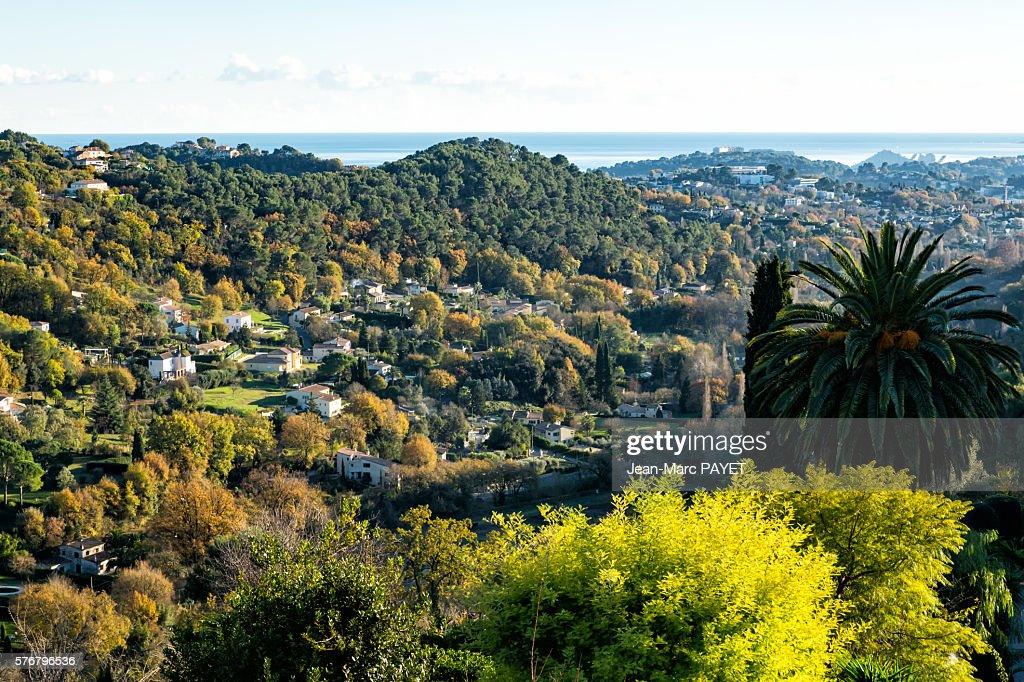 Saint-Paul de Vence's valley : Photo