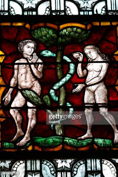 SaintPierreleJeune Protestant Church Garden of Eden Adam and Eve The original sin Stained glass window Strasbourg France