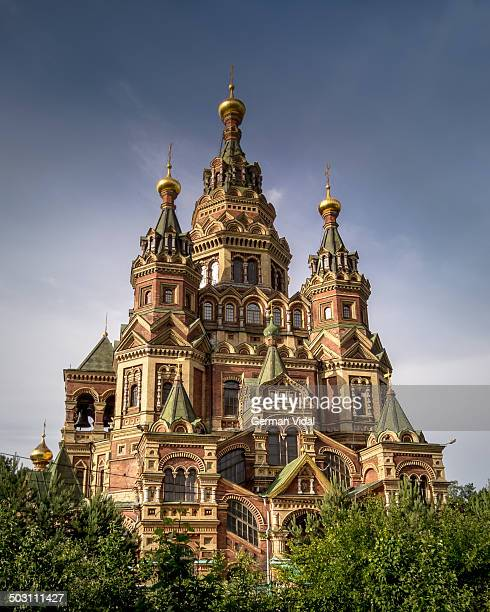 saints peter and paul cathedral, peterhof (color) - groot paleis peterhof stockfoto's en -beelden