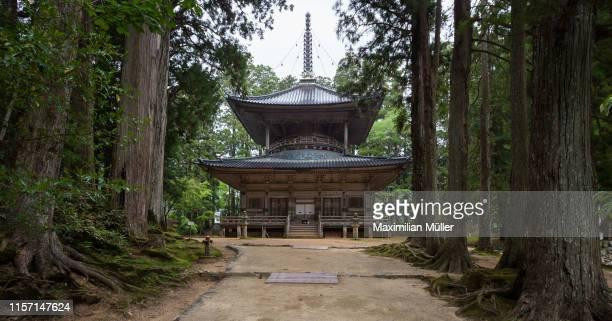 saito pagoda, danjo garan, koya-san, japan - koyasan stock-fotos und bilder