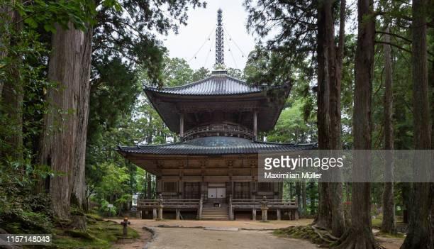 saito pagoda, danjo garan, koya-san, japan - danjo garan stock-fotos und bilder