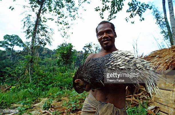 Sakai shows a porcupine killed during a hunting The Sakai claim that the animal has become rare because of deforestation The Sakai is an ethnic group...