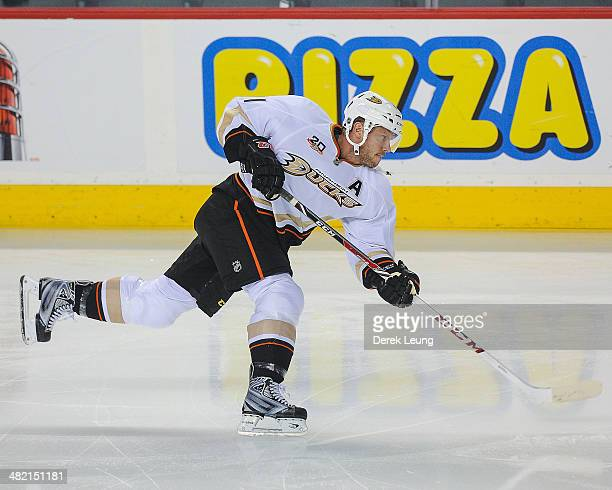 Saku Koivu of the Anaheim Ducks in action against the Calgary Flames during an NHL game at Scotiabank Saddledome on March 26 2014 in Calgary Alberta...