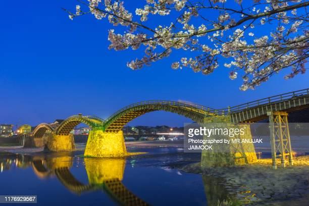 sakura blooming at iwakuni, japan - 山口県 ストックフォトと画像