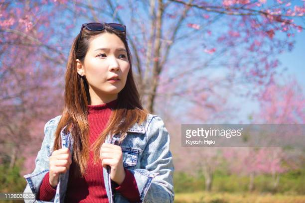 sakura, springtime concept. portrait of  young woman enjoying spring standing in front blooming cherry blossom tree in garden. - hot women pics stock pictures, royalty-free photos & images