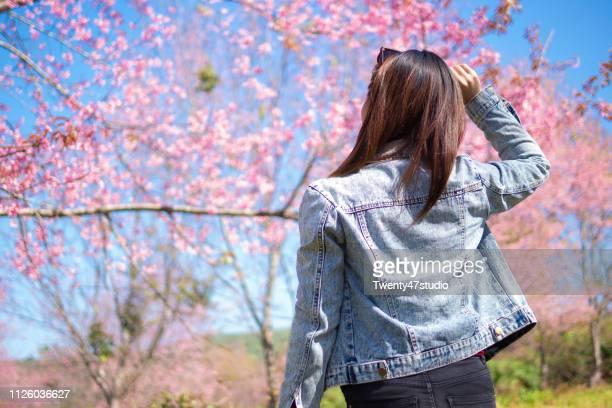 sakura, springtime concept. rear view of young woman standing in front blooming cherry blossom tree in garden. - abril fotografías e imágenes de stock