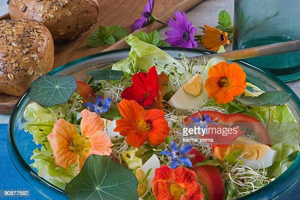 salad for the summer time - nasturtium stock pictures, royalty-free photos & images
