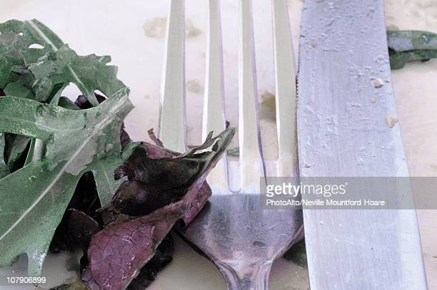 Salad, fork and knife, close-up