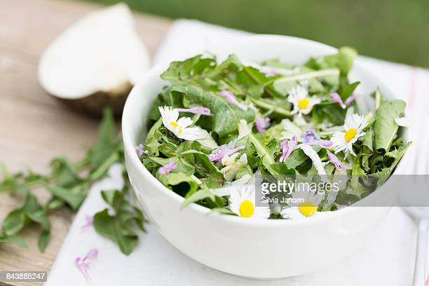 salad from dandelion leaves and radish - dandelion leaf stock pictures, royalty-free photos & images