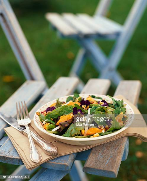 Salad plate on chair, close-up