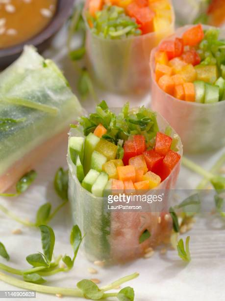 springrolls per insalata - cultura vietnamita foto e immagini stock